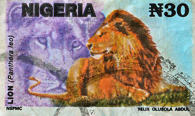 1993 Nigerian Lion Stamp Poster