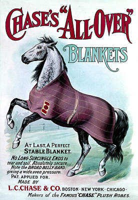 19th C. Chase's Horse Blankets Poster