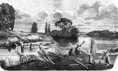 19th Century Hemp Farming Poster