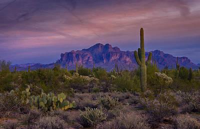 A Beautiful Desert Evening  Poster