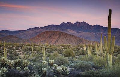 A Desert Sunset  Poster by Saija  Lehtonen