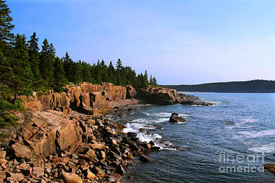 Acadia Coast Poster