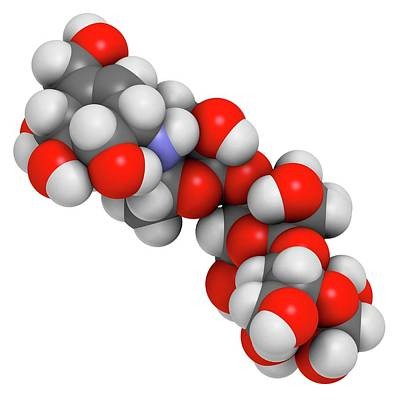 Acarbose Diabetes Drug Molecule Poster