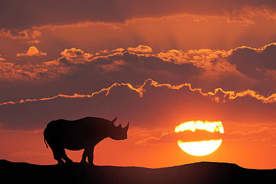 Africa, Kenya, Masai Mara Game Reserve Poster