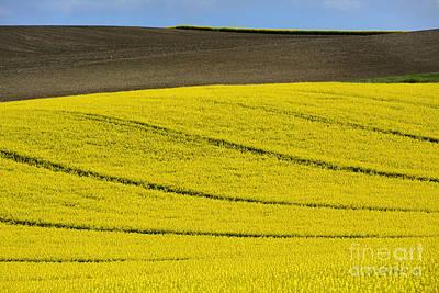 Agricultural Landscape.  Poster by Bernard Jaubert