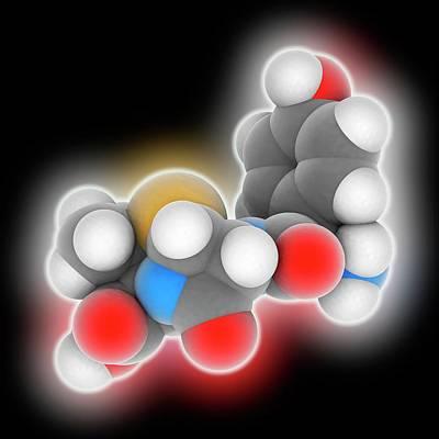 Amoxicillin Drug Molecule Poster by Laguna Design