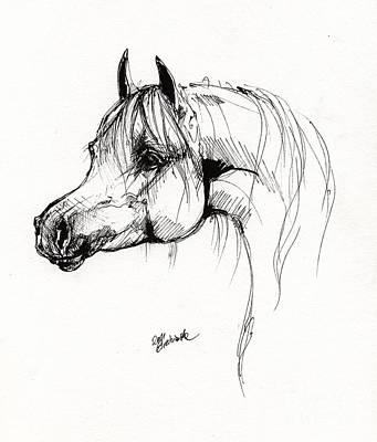 Arabian Horse Drawing 6 Poster