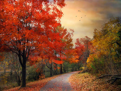 Poster featuring the photograph Autumn Maples by Jessica Jenney