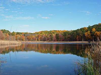 Autumn Pond Poster by Aimee L Maher Photography and Art Visit ALMGallerydotcom