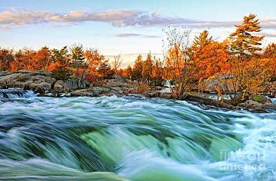 Autumn Waterfalls Poster by Charline Xia