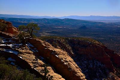 Bear Mountain Trail Poster