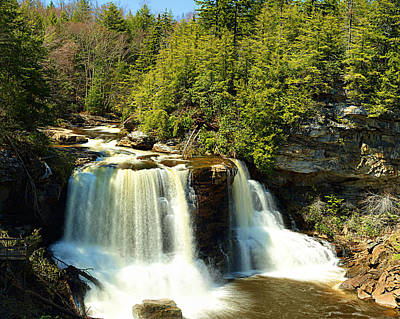Blackwater Falls Poster by Metro DC Photography