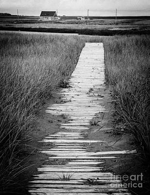 Boardwalk Through The Dunes Poster by Edward Fielding