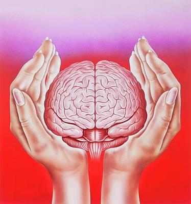 Brain Protection Poster by John Bavosi