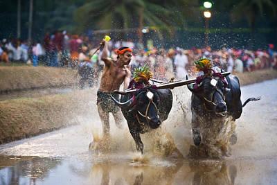 Buffalo Race Poster