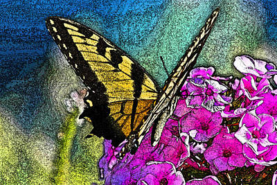Butterfly Poster by Andy Lawless