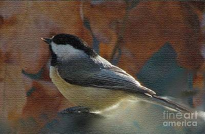 Poster featuring the photograph Chickadee In Autumn by Janette Boyd