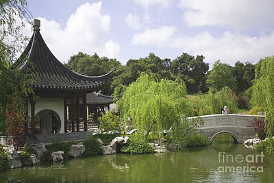 Chinese Water Garden Poster