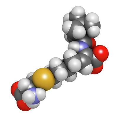 Cilastatin Molecule Poster