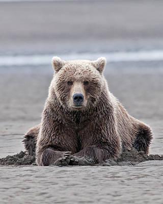 Coastal Brown Bears On Salmon Watch Poster by Gary Langley