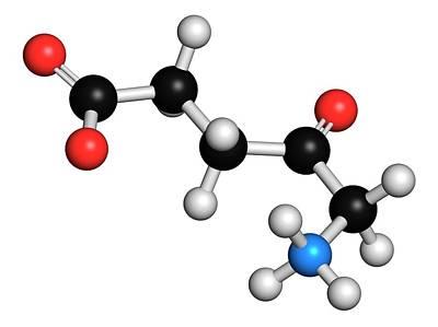 D-aminolevulinic Acid Ala Drug Molecule Poster by Molekuul