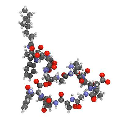 Daptomycin Antibiotic Drug Molecule Poster by Molekuul