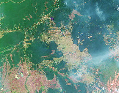 Deforestation In The Amazon Poster by Nasa Earth Observatory