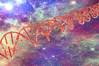 Dna Molecule Poster by Kateryna Kon