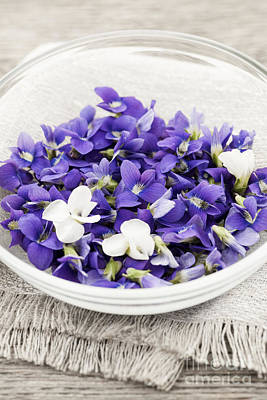 Edible Violets In Bowl Poster