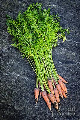 Fresh Carrots From Garden Poster by Elena Elisseeva