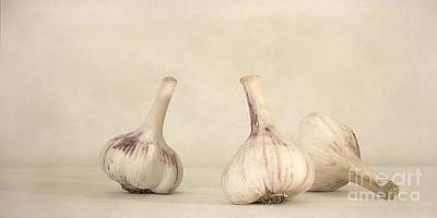 Fresh Garlic Poster by Priska Wettstein
