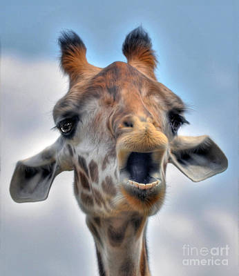 Poster featuring the photograph Giraffe  by Savannah Gibbs