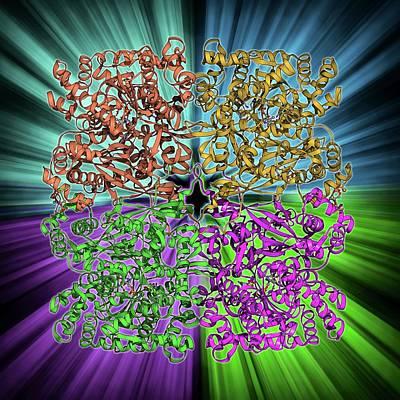 Glycogen Phosphorylase Molecule Poster