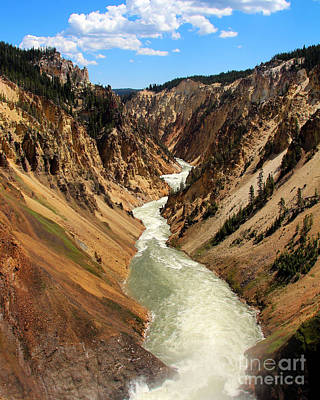 Poster featuring the photograph Grand Canyon Of Yellowstone by Jemmy Archer