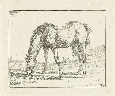 Grazing Horse Left, Jan Dasveldt Poster