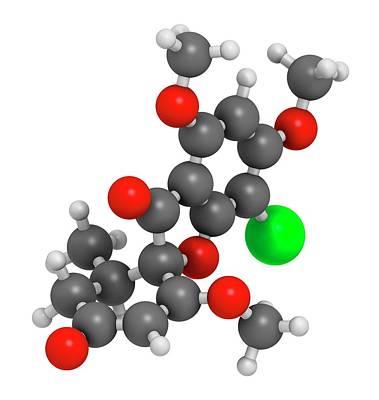 Griseofulvin Antimycotic Drug Molecule Poster