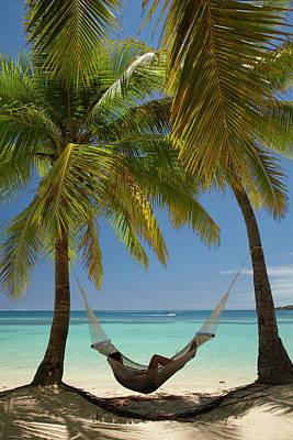 Hammock And Palm Trees, Plantation Poster