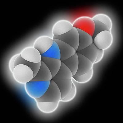 Harmine Drug Molecule Poster by Laguna Design