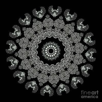 Kaleidoscope Ernst Haeckl Sea Life Series Black And White Set 2 Poster
