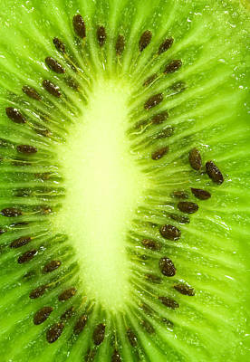 Kiwi Poster by Modern Art Prints