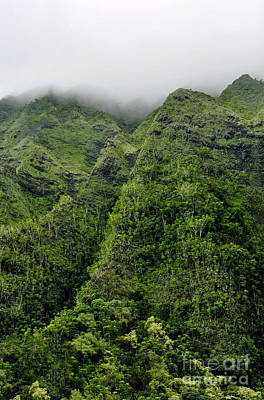 Poster featuring the photograph Ko'olau Mountain by Gina Savage