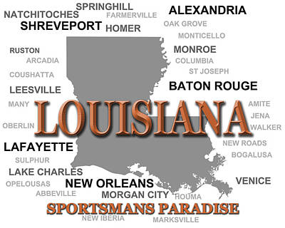 Louisiana State Pride Map Silhouette  Poster