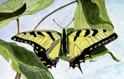 Poster featuring the painting Male Eastern Tiger Swallowtail by Angela Davies