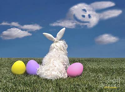 Maltese Easter Bunny Poster