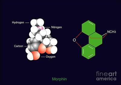 Morphine Molecule Poster by Francis Leroy, Biocosmos