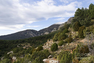 Mountain Landscape In Huesca Poster