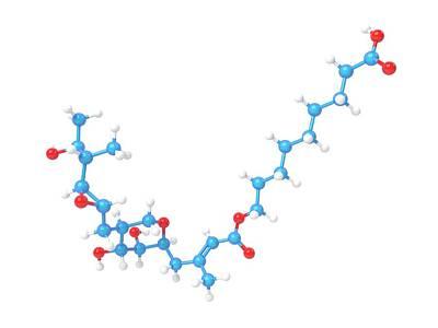Mupirocin Antibiotic Molecule Poster by Indigo Molecular Images