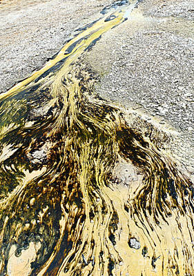 Nature's Inkblot Test - Abstract Runoff Of A Hot Spring With Algae And Bacteria. Poster