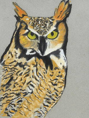 Poster featuring the painting Night Owl by Jeanne Fischer