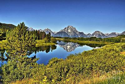 Oxbow Bend Reflection Poster by David Burks